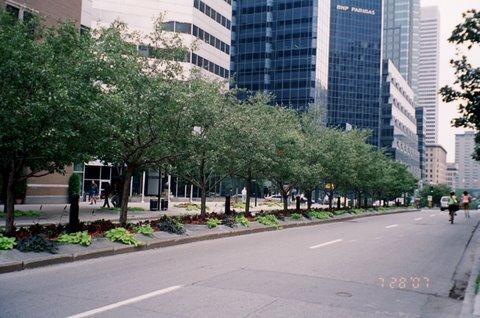 Boulevard en la ciudad de Montreal