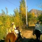 Desfile a caballo en Sañogasta