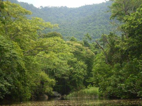 Brasil tiene el mayor santuario ecológico del mundo en Mato Grosso do Sul