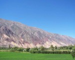 Viva Jujuy, viva la Puna, vivan los cerros pintarrajeados de mi quebrada.