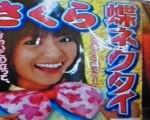 Conocer la cultura de Japón