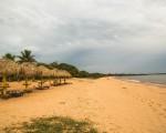 Pará, un destino destacado en el ecoturismo de Brasil