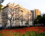 Belo Horizonte, la capital de los bares, combina historia y modernidad