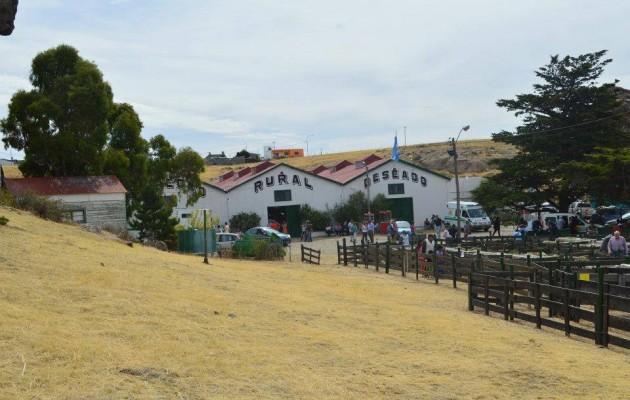 La  Exposición y Feria Ganadera de la Sociedad Rural se realiza en Puerto Deseado