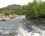 El Arroyo Benítez, un curso de agua al sur de Cortaderas