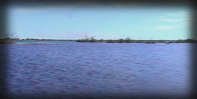 """""""Iberá por un día"""", una oferta turística que recorre los Humedales correntinos"""