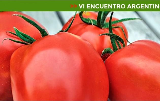 """San Juan, la provincia será anfitriona del """"VI Encuentro Argentino del Tomate"""""""