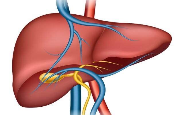 OSPAÑA y la concientización sobre la hepatitis y su prevención